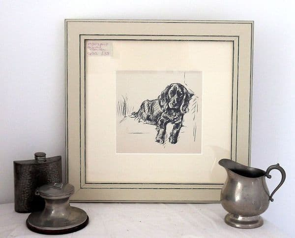 Spaniel lying on sofa looking out  1930's print by Lucy Dawson - Sp D2